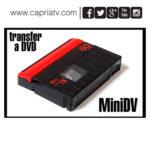 transfer de minidv a dvd