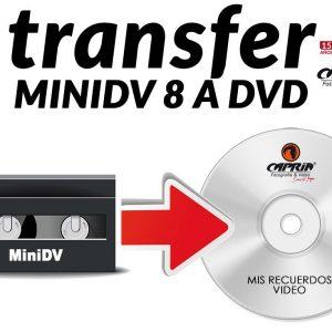 Transfer de minidv a dvd cali
