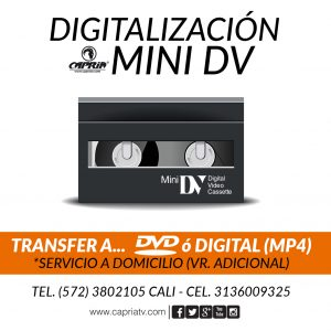 CONVERSION MINIDV A DVD