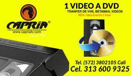 transfer de video a dvd usb