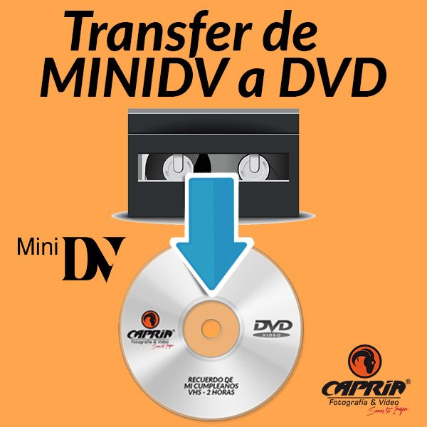 Transfer MINIDV a DVD