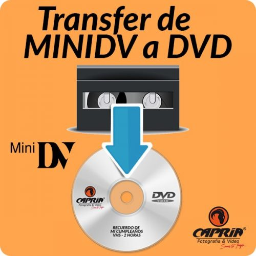 Transfer MINIDV a DVD cali