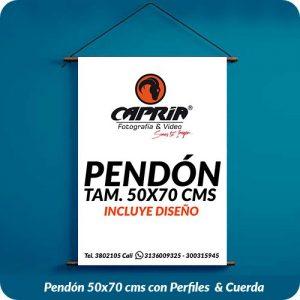 Venta de Pendon 50x70 cali