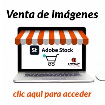 Venta_de_Imagenes_Adobe_stock_capria_Fotografia