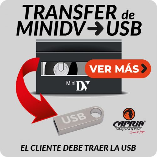 Boton Transfer MINIDV A USB JPG