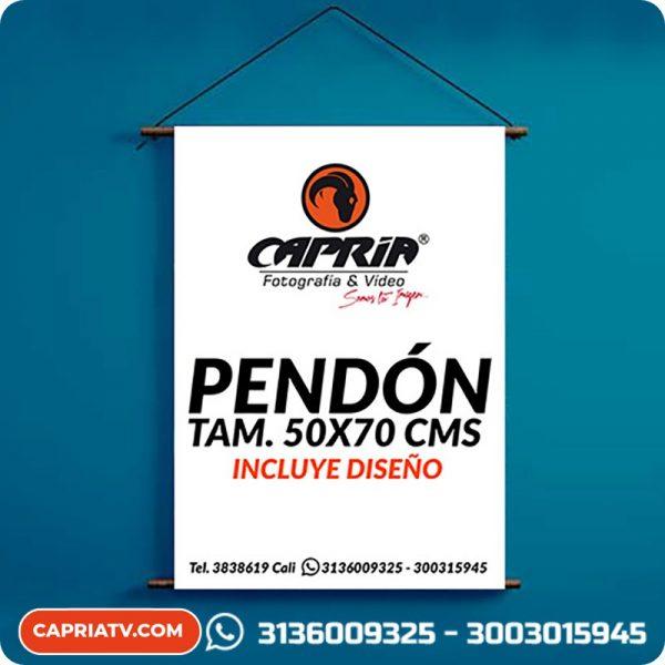 Pendon-publicitario 50x70 1R